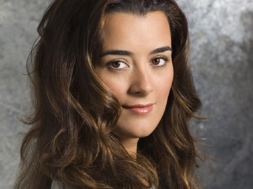 ziva-david-wallpaper-ziva-david-25967902