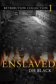 Enslaved_Series1-small